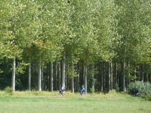 A greenway on La Loire a Velo, part of EuroVelo 6