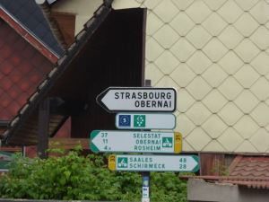 Bicycling in the Alsace Wine Region