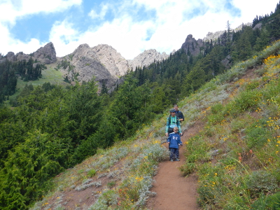 Guided Olympic National Park Hiking Or Snowshoeing On The