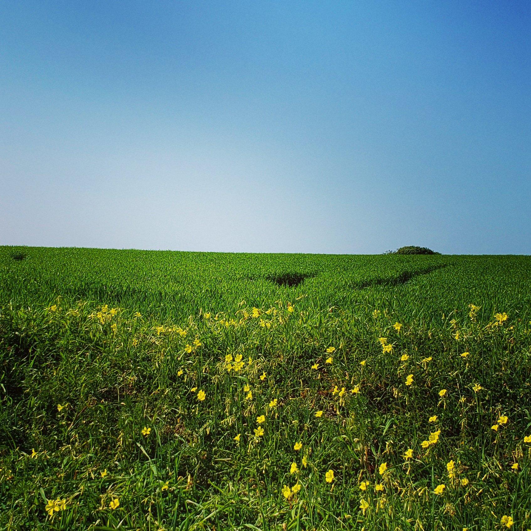 52 Reasons To Love Sicily   #1. Green Hillsides