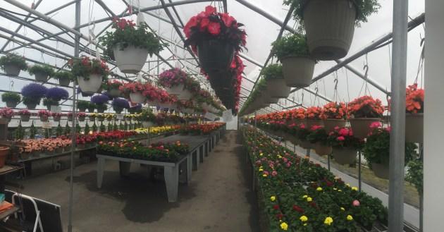 Farmer Brown Garden Center