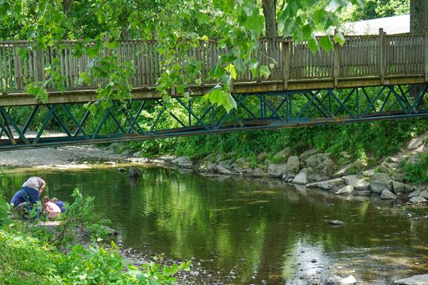 Hickories-Park-Creek-Owego-Tioga-County-NY