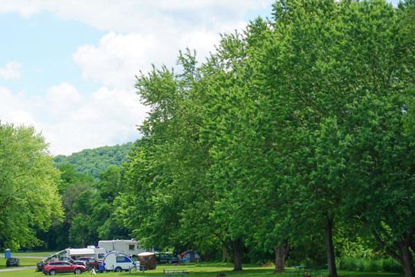 Hickories-Park-Riverside-Camping-Owego-Tioga-County-NY