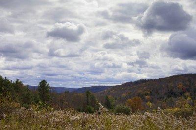 Logan hill 4
