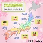2017 Cherry Blossom Forecast : Tokyo MARCH 25 – APRIL 02!