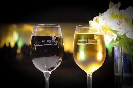 Noche de las Viñas