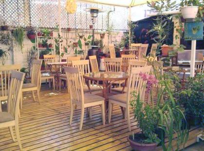 cafe_botanico_