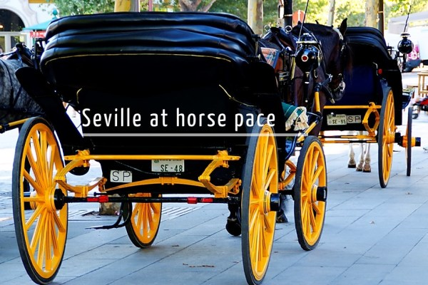 Seville horse-drawn carriage tour