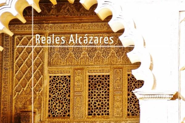 Visite guidée des Reales Alcázares de Séville