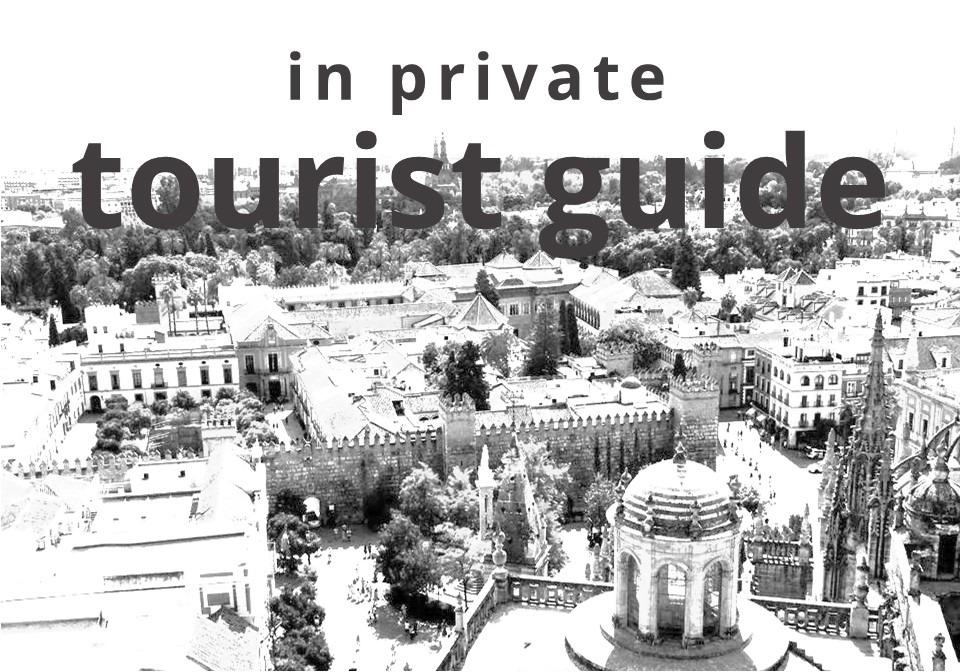 Private tourist guide in seville