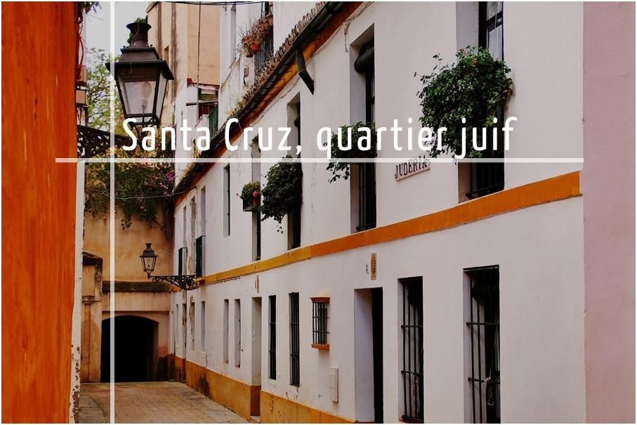 Tour par le quartier de Santa Cruz