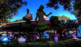 magic kingdom mad tea
