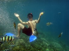 Resized Underwater view3