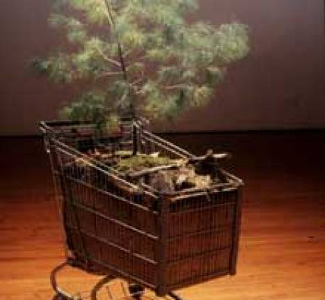 pinecart