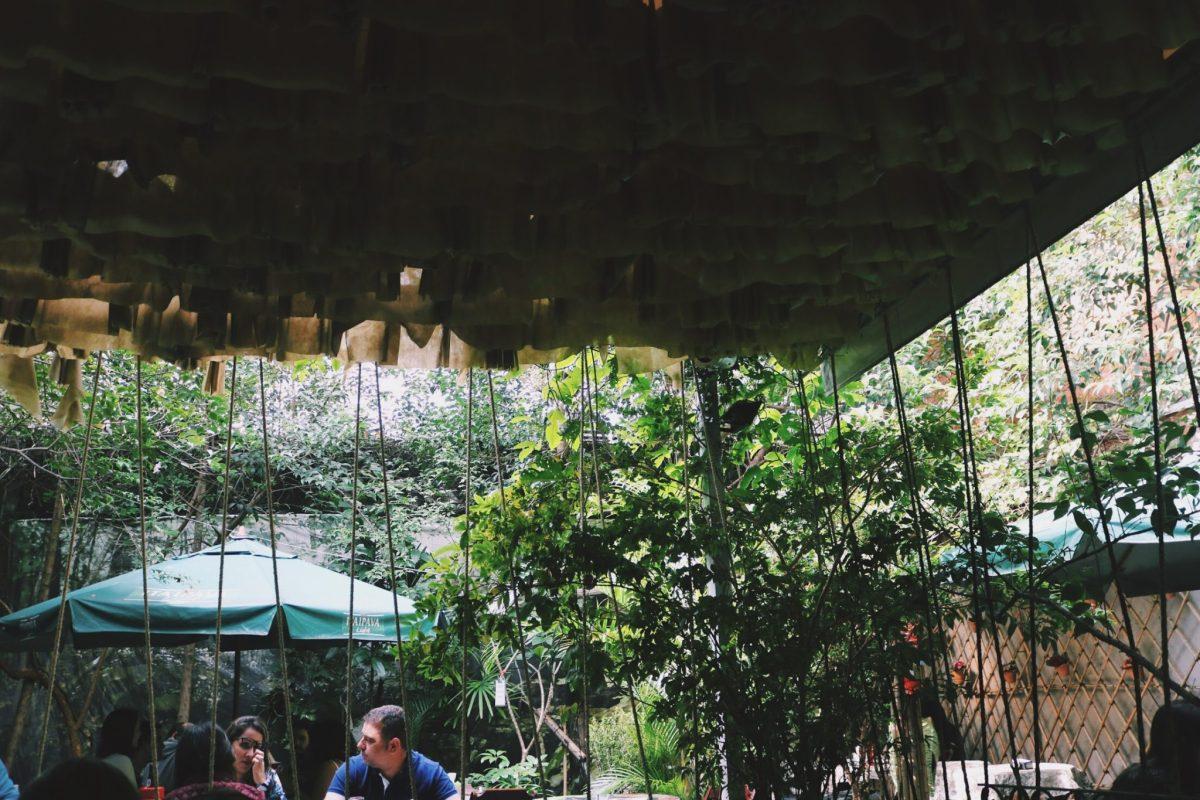 Quase um oásis: restaurante escondido na Benedito Calixto