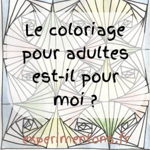 Le coloriage pour adultes est il pour moi ?