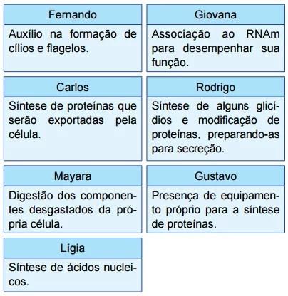 fichas com características de organelas celulares