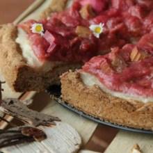 Foto vom veganen Anarcho-Rhabarber-Kuchen 3