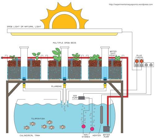 small resolution of aquaponics cycle diagram www pixshark com images