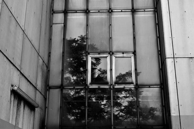 2012-06-15_urban-nature-2