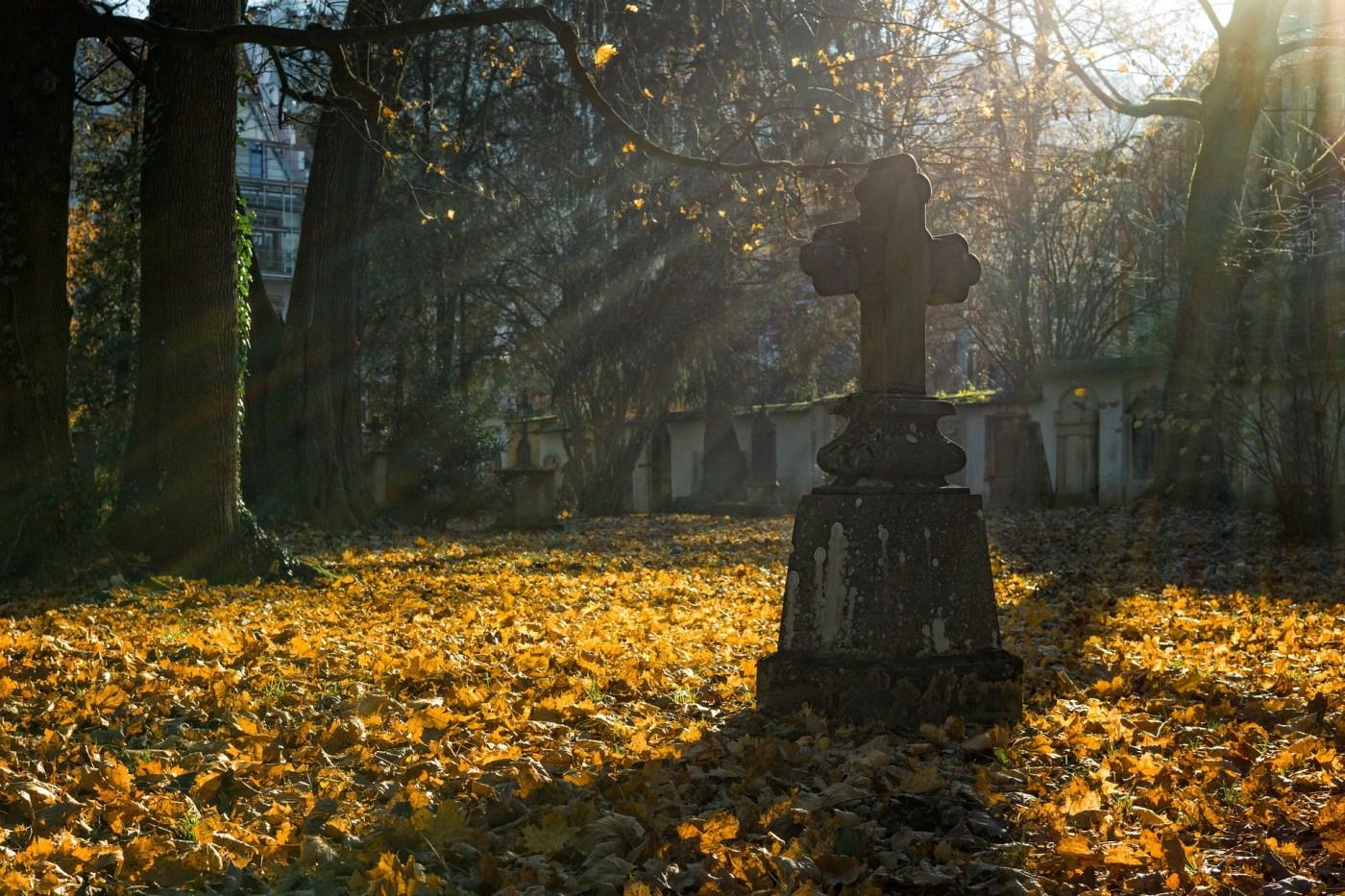 Grave, autumn