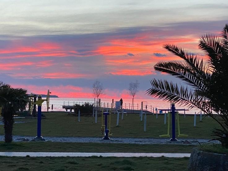 sunset, palms trees, sea