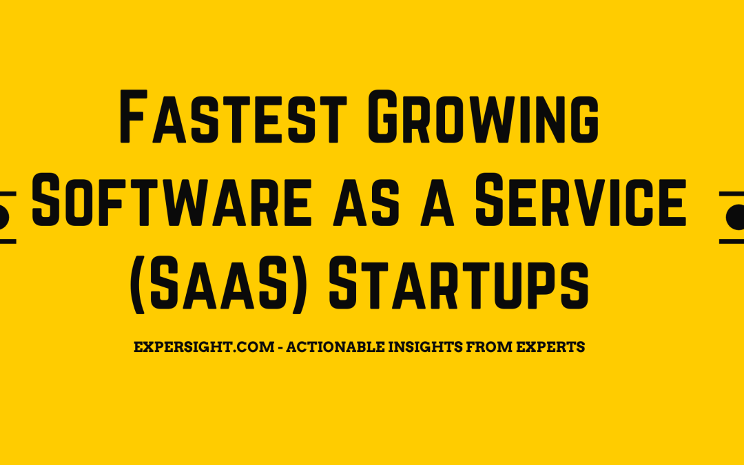 Fastest Growing Software as a Service (SaaS) Startups in 2021