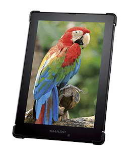 Sharp-tablet-2015