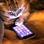 3G тарифы «сбивают с ног»