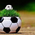 Ставка на спорт: реален ли стабильный заработок?