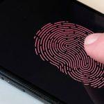 Apple встроит в дисплей iPhone антенны и Touch ID