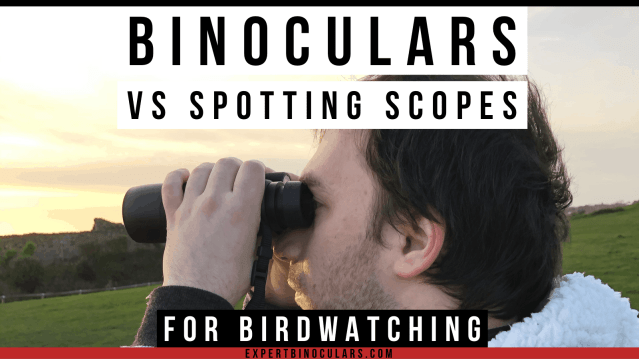 binoculars vs spotting scopes for birdwatching