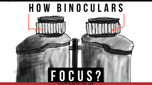 how binoculars focus?