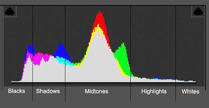 Screenshot of a photography histogram