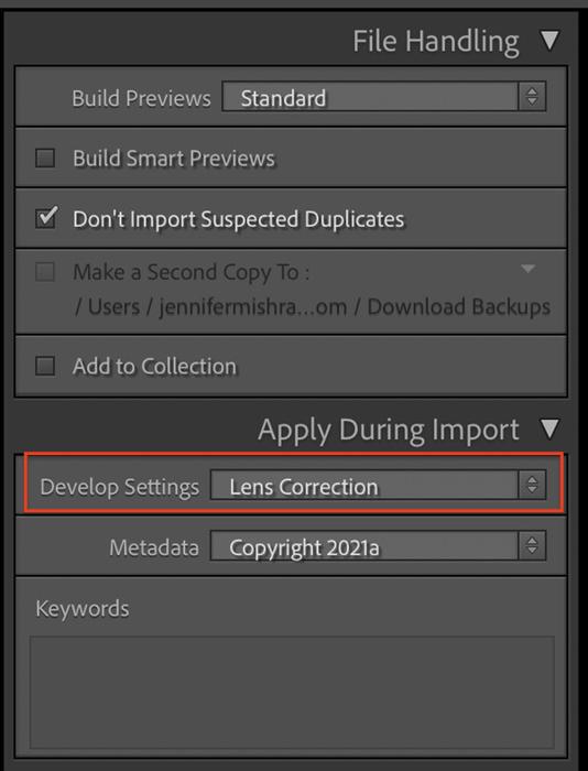 Screenshot Lightroom Classic Import panel