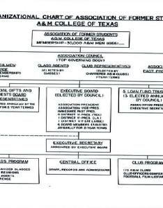 Organizational chart the importance of and its uses in  business also rh businessandfinancescolumn