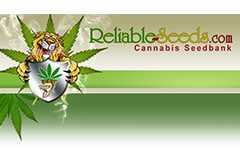 Reliable Seeds