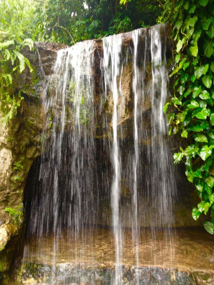 waterfall Botanic Gardens