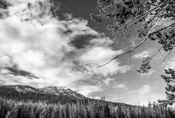 Yellowstone National Park, WY. October 2015.