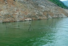 A fishing trap in the river