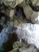 Limestone cave near a mangrove forest in Langkawi