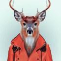 Zoo-Portraits-Yago-Partal-explicark05