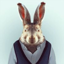 Zoo-Portraits-Yago-Partal-explicark13
