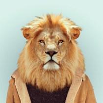 Zoo-Portraits-Yago-Partal-explicark23