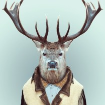 Zoo-Portraits-Yago-Partal-explicark26