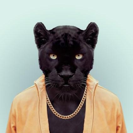 Zoo-Portraits-Yago-Partal-explicark31