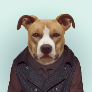Zoo-Portraits-Yago-Partal-explicark40