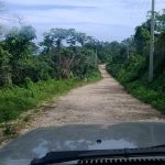 Road to larimar mine
