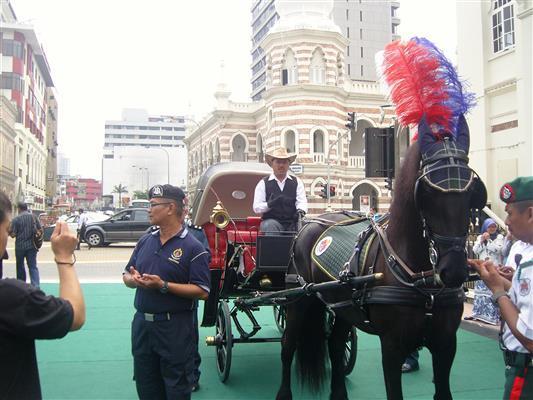Kuda yang gagah ini diimport daripada Belgium