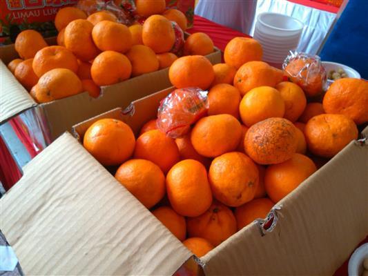 limau mandarin